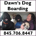 Dawn's Dog Boarding serving the Hudson Valley,  New York